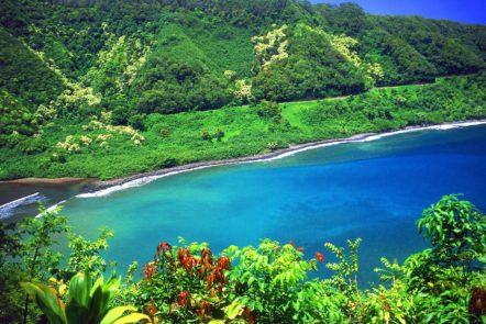 free maui adventures road to hana